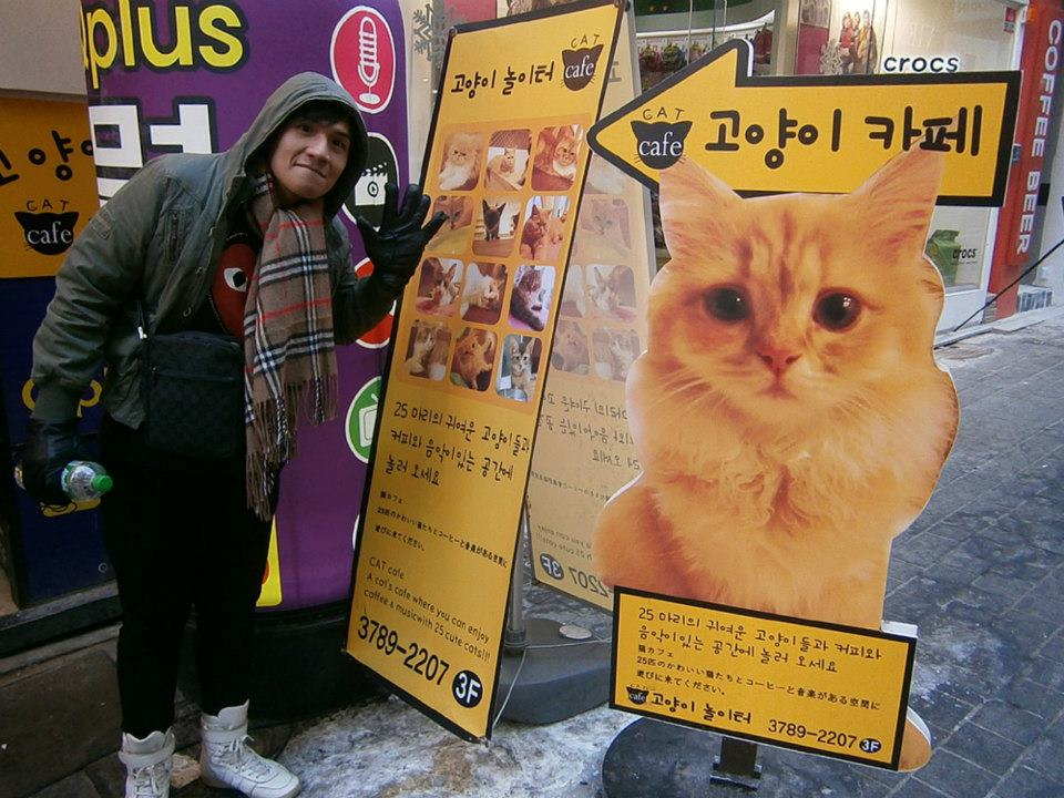 And we saw this sign of the Cat Cafe in Myeongdong, which we visited a day after --- cuteness overload!