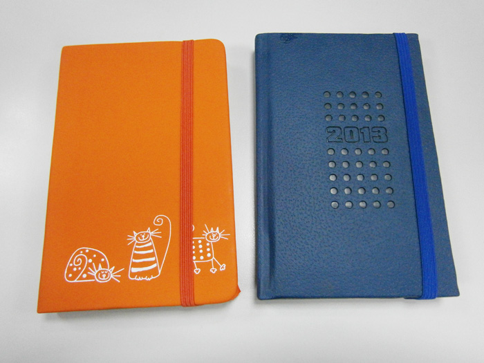 Orange kitty mini-notebook and 2013 planner from National Bookstore