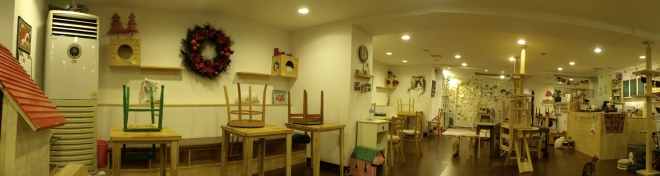 Panorama shot of Cat Café, Myeongdong - see the kitties on the right