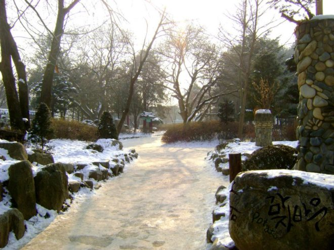The place looked amazing --- Winter in Seoul December 2012 - Day 3: Nami Island