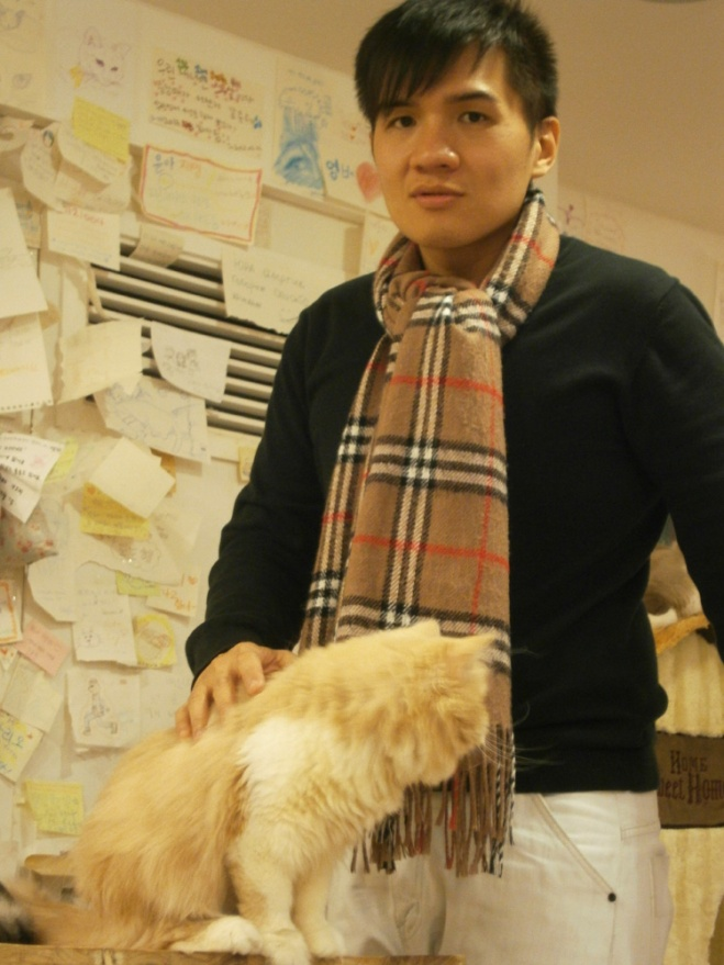 This was the sweetest kitty in the room --- Cat Café Myeongdong, Seoul