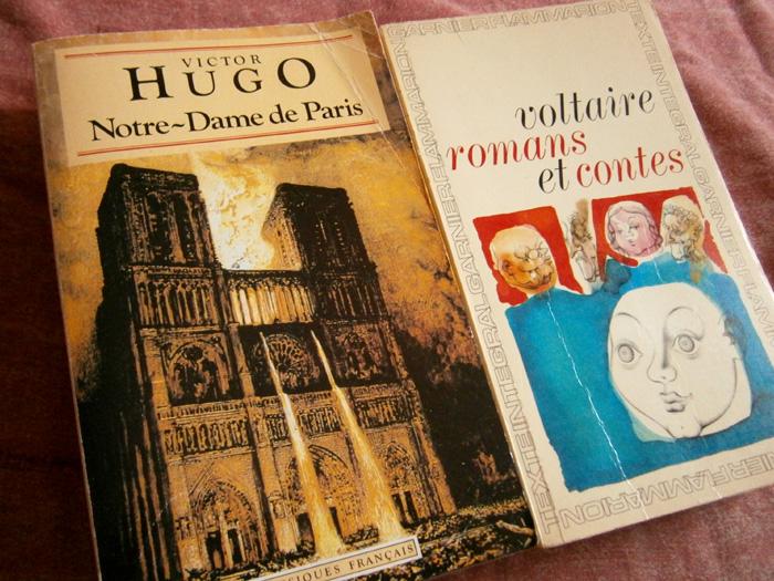 Victor Hugo's Notre Dame de Paris and Voltaire's Romans et Contes