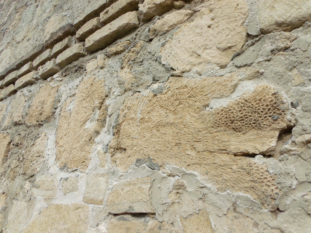 Peculiar material of the structure - coral bricks