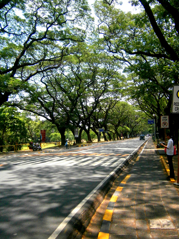 The Academic Oval - UP Diliman