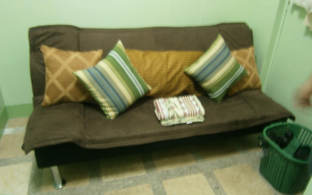 Our new sofa bed with its new pillows