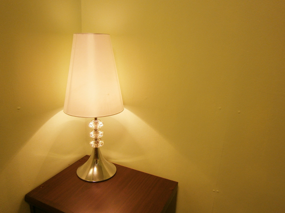 Our new lampshade