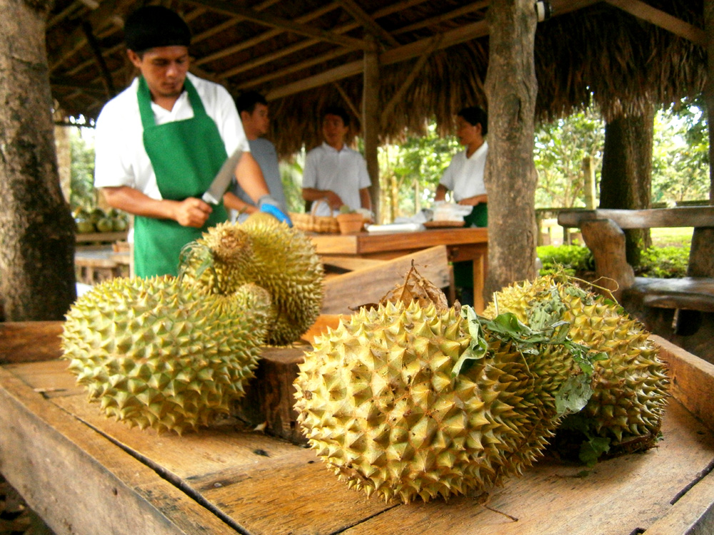 Durians from Matling Plantation