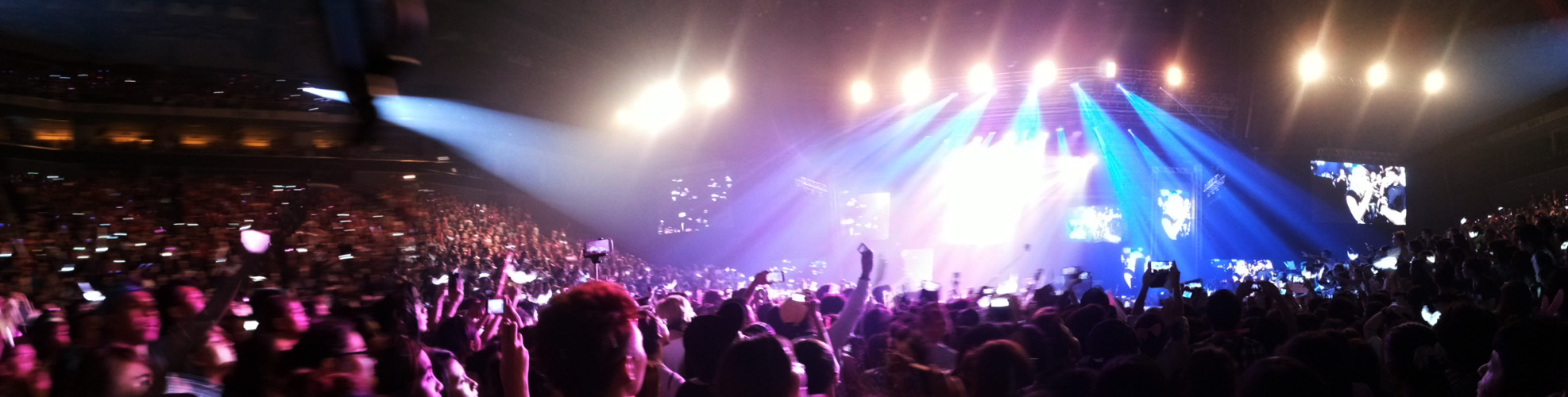 The crazy crowd during the concert